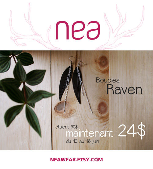 raven1_FR